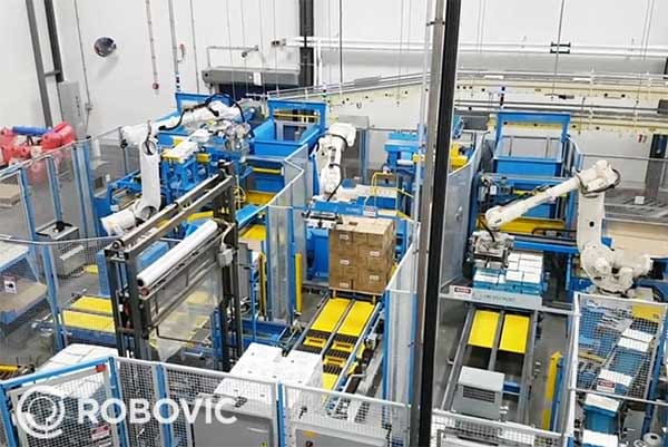 Picture of a palletizing solution cel for boxs